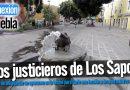 Historia de Los justicieros de Los Sapos
